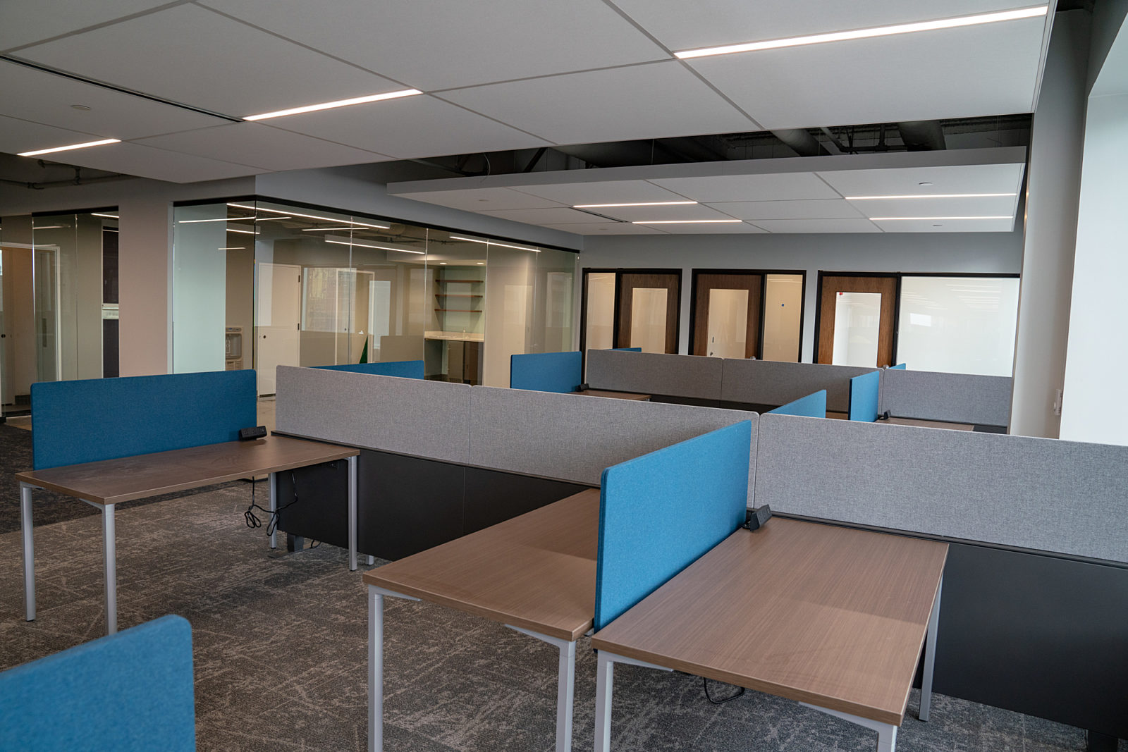 Lev Project Highlight: desk spaces with dividers