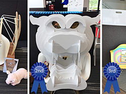 Top 3 winners of the Chair Design Challenge